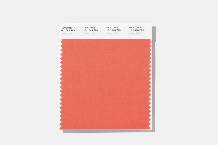 Pantone Color of the Year for 2019 Will Be the Warm Living Coral Tone 1 Pantone Color of the Year Pantone Color of the Year for 2019 Will Be the Warm Living Coral Tone Pantone Color of the Year for 2019 Will Be the Warm Living Coral Tone 1