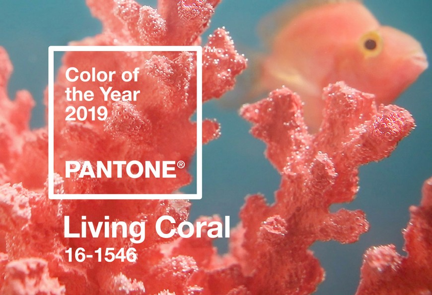 Pantone Color of the Year for 2019 Will Be the Warm Living Coral Tone 5 Pantone Color of the Year Pantone Color of the Year for 2019 Will Be the Warm Living Coral Tone Pantone Color of the Year for 2019 Will Be the Warm Living Coral Tone 6
