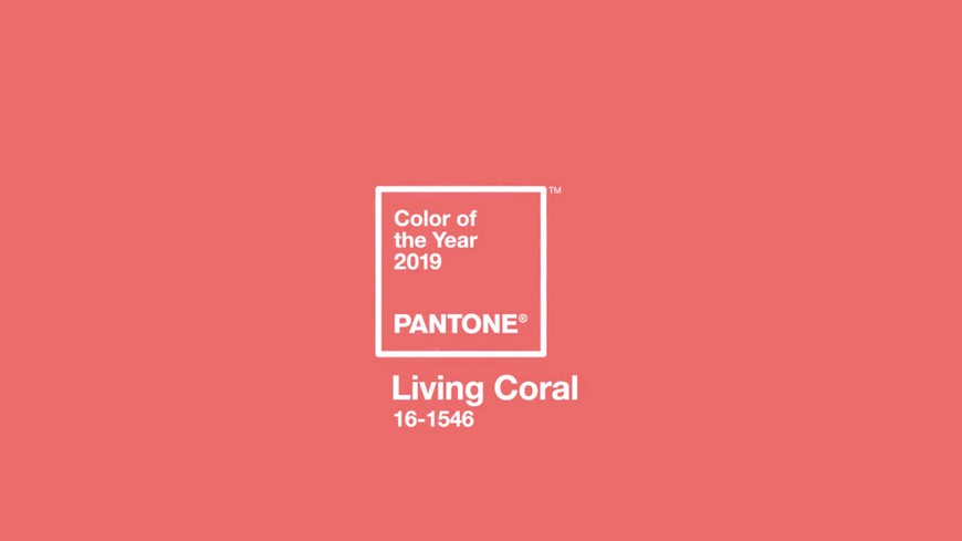 Pantone Color of the Year for 2019 Will Be the Warm Living Coral Tone 7 Pantone Color of the Year Pantone Color of the Year for 2019 Will Be the Warm Living Coral Tone Pantone Color of the Year for 2019 Will Be the Warm Living Coral Tone 7