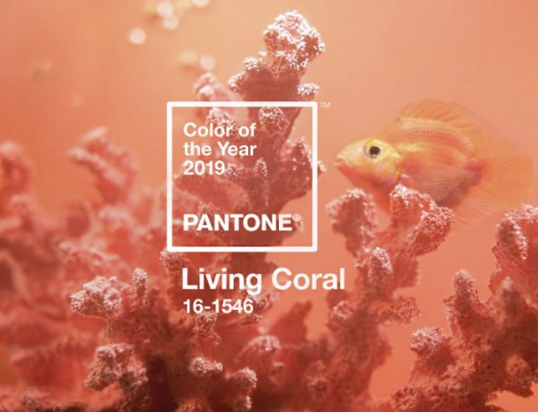 Pantone Color of the Year Pantone Color of the Year for 2019 Will Be the Warm Living Coral Tone featured 7 600x460